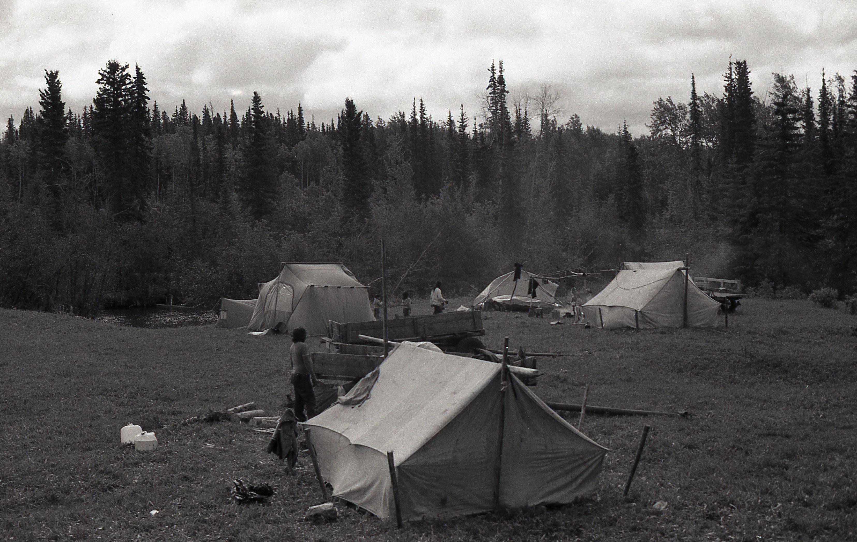 110b fish camp