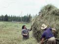 Kluskus Making Hay